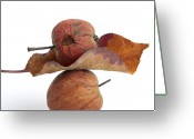 Rotten Greeting Cards - Leaf and apples Greeting Card by Bernard Jaubert