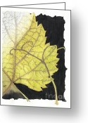Fine Art Watercolor Drawings Greeting Cards - Leaf Greeting Card by Elena Yakubovich