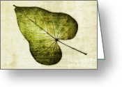 Image Overlay Greeting Cards - Leaf Texture Overlay Greeting Card by David Waldrop