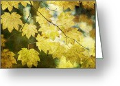 Fall Leaves Photo Greeting Cards - Leaf Zen T Greeting Card by Rebecca Cozart