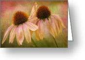 Garden Pyrography Greeting Cards - Lean On Me Greeting Card by Donna Eaton
