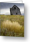 Alberta Prairie Landscape Greeting Cards - Leaning A Little Greeting Card by Bob Christopher