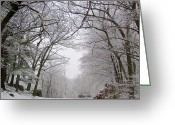 Snow On Field Greeting Cards - Leap Day Snow Greeting Card by Lori Lafargue