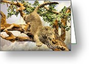 Leap Greeting Cards - Leaping Leopard Greeting Card by Kristin Elmquist