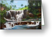 Dominica Alcantara Greeting Cards - Leaping Waterfall Greeting Card by Dominica Alcantara