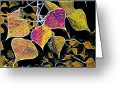 Morning Mist Images Greeting Cards - Leaves Greeting Card by Judi Bagwell