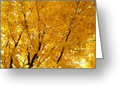 Changing Colors Greeting Cards - Leaves of Gold Greeting Card by Julie Palencia