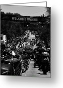 Harley Davidson Art Greeting Cards - Leesburg Florida 2012 Bikefest work C Greeting Card by David Lee Thompson