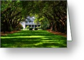 Oak Trees Greeting Cards - Legare Waring House Charleston SC Greeting Card by Susanne Van Hulst
