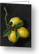 Hyper-realism Painting Greeting Cards - Lemons on slate Greeting Card by Paul Herman