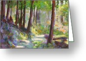 Washington Pastels Greeting Cards - Lena Lake Trail Shadows Greeting Card by Mary McInnis