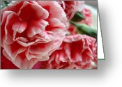 Pink Carnations Greeting Cards - Les Jolis Petales Greeting Card by Kathy Bucari