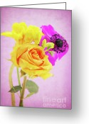 Decorativ Photo Greeting Cards - Let it be... Greeting Card by Angela Doelling AD DESIGN Photo and PhotoArt