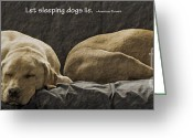 Lazy Dogs Greeting Cards - Let sleeping dogs lie Greeting Card by Gwyn Newcombe