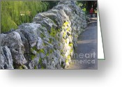 Rock Walls Greeting Cards - Lets Walk Through the Park Greeting Card by Marilyn Wilson