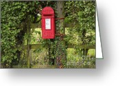 Mail Box Photo Greeting Cards - Letterbox in a Hedge Greeting Card by Louise Heusinkveld