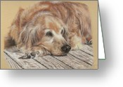 Man Pastels Greeting Cards - Lexie Greeting Card by Terry Kirkland Cook