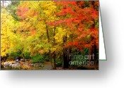 Fall River Scenes Painting Greeting Cards - Li12.11 Greeting Card by Shasta Eone