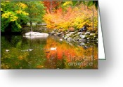 Fall River Scenes Painting Greeting Cards - Li12.17 Greeting Card by Shasta Eone