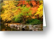 Fall River Scenes Painting Greeting Cards - Li12.26 Greeting Card by Shasta Eone