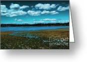 Kitsap Peninsula Greeting Cards - Liberty Bay Seattle WA Greeting Card by RJ Aguilar