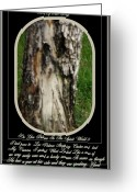 Art Greeting Cards - Life After Death..amazing Image Greeting Card by Sherri  Of Palm Springs