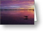 Gulf Of Mexico Greeting Cards - Life after Sunset Greeting Card by Melanie Viola