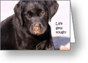 Black Lab Puppy Greeting Cards - Life Gets Tough Greeting Card by Cathy  Beharriell
