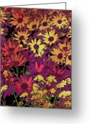 Colorful Photography Painting Greeting Cards - Life in Flowers Greeting Card by JQ Licensing