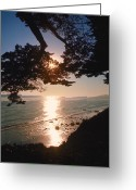 Surf Silhouette Greeting Cards - Life is a Beach Greeting Card by Jerry McElroy