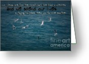 Seabirds Digital Art Greeting Cards - Lifes Lessons Greeting Card by Vicki Ferrari