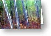 Abstract Impressionism Photo Greeting Cards - Light in the Forest Greeting Card by Bill Morgenstern