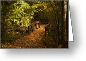 Foot Bridge Greeting Cards - Light My Way Greeting Card by Robin Webster