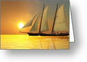 Sailboat Greeting Cards - Light of Life Greeting Card by Corey Ford