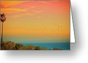 Wild Bird Greeting Cards - Light Of Sun Setting On  Malibu Beach Greeting Card by Albert Valles