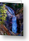 Southern Rocky Mountains Greeting Cards - Light on Seven Falls Greeting Card by Aaron Burrows