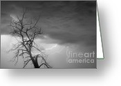Lightning Bolt Pictures Greeting Cards - Lightning Tree Silhouette 29 Greeting Card by James Bo Insogna