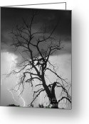 Lightning Bolt Pictures Greeting Cards - Lightning Tree Silhouette Portrait BW Greeting Card by James Bo Insogna
