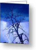 Lightning Bolt Pictures Greeting Cards - Lightning Tree Silhouette Portrait Greeting Card by James Bo Insogna
