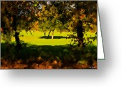 Johnny Trippick Greeting Cards - Light.Shade.Tree.Shadow. Greeting Card by Johnny Trippick