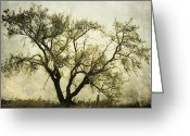 Power Lines Greeting Cards Greeting Cards - Likeable  Elm Greeting Card by Jerry Cordeiro