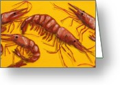 Louisiana Seafood Greeting Cards - Lil Shrimp Greeting Card by JoAnn Wheeler