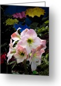 Tropical Gardens Greeting Cards - Lilies and Glass Greeting Card by Stephen Mack