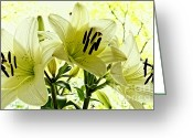 Yellow Trees Greeting Cards - Lilies in nature Greeting Card by Kristin Kreet