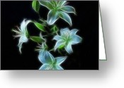 Digital Flower Greeting Cards - Lilies Greeting Card by Sandy Keeton