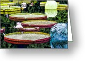 Lilly Pad Greeting Cards - Lilly Pond Greeting Card by Georgeann  Chambers
