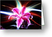 Lightpaint Greeting Cards - Lily Light Greeting Card by Andrew Nourse