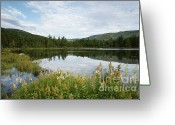 Scenic Byways Greeting Cards - Lily Pond - White Mountains New Hampshire USA Greeting Card by Erin Paul Donovan
