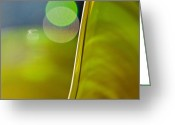 Green Print Glass Art Greeting Cards - Lime Abstract Two Greeting Card by Dana Kern