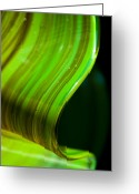 Green Print Glass Art Greeting Cards - Lime Curl Greeting Card by Dana Kern